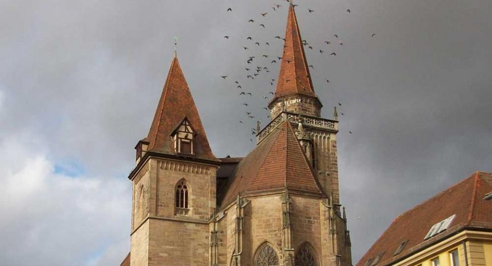 Ansbach St. Johannis Vögel