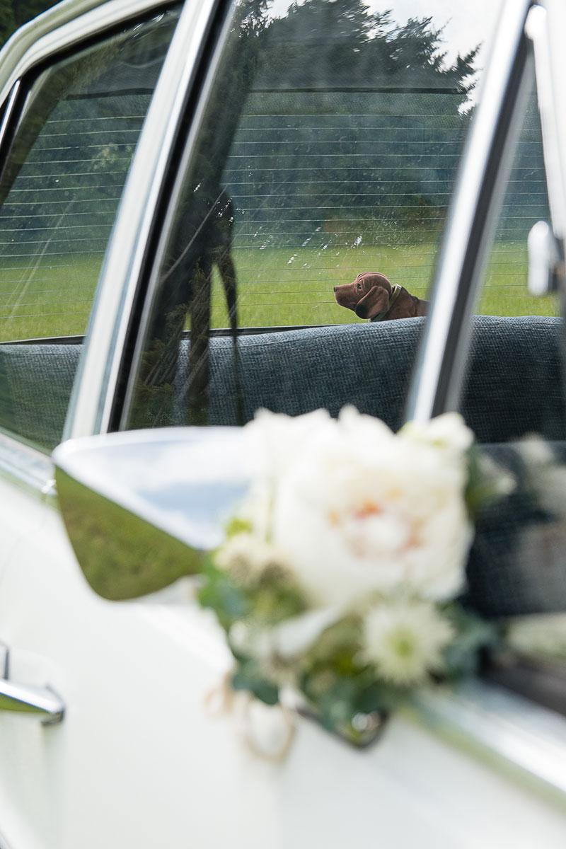 Hochzeitsfotografin Weißenburg und Eichstätt im Altmühltal